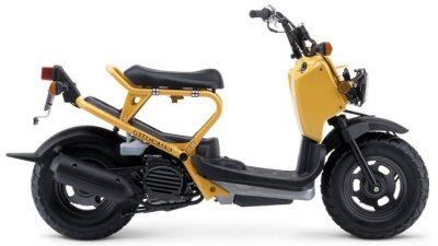 Honda Ruckus