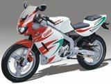 Rieju RS1 Castrol