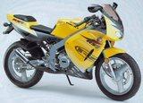 Rieju RS1 Racing